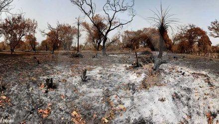 Le Sénégal signe un accord de financement avec l'Allemagne et le fonds vert pour le climat