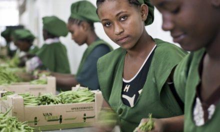 4YOU™ augmente le pouvoir d'achat des Sénégalais en créant 1 000 emplois pour les femmes