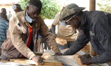 Diourbel abritera LE programme: Zone de développement artisanal du Sénégal