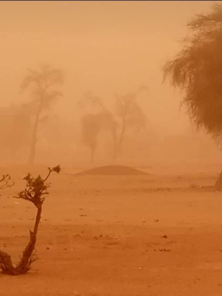 DAKAR sous un nuage de poussière 1