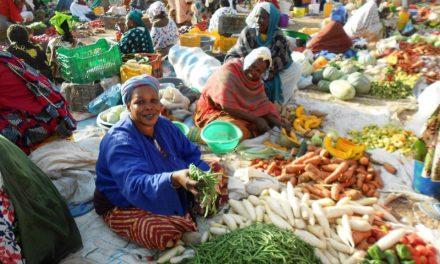 Sénégal: léger relèvement des prix à la consommation