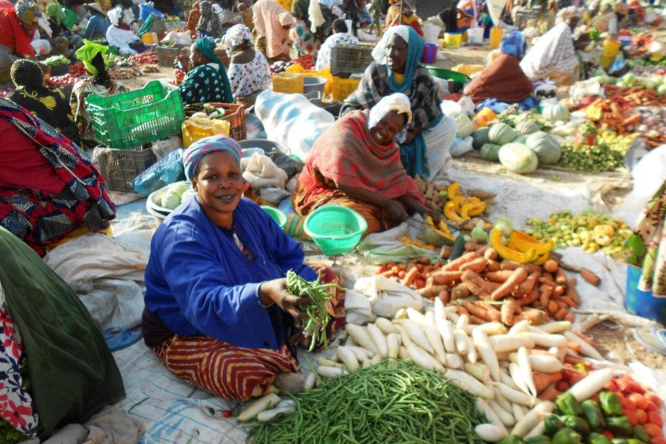 L'Etat cède à 47 milliards de recettes pour soutenir le pouvoir d'achat des Sénégalais