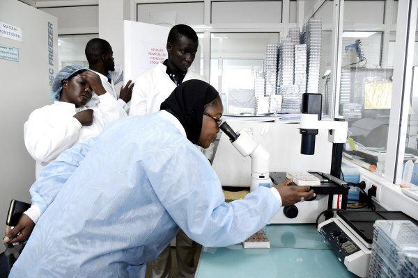 Lutte contre le coronavirus – L'institut pasteur de Dakar annonce une bonne nouvelle