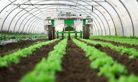 DAKAR-BRAZZAVILLE: uN ACCORD DE COOPÉRATION DE DÉVELOPPEMENT AGRICOLE ET AGROALIMENTAIRE