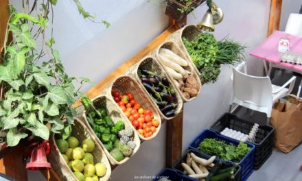 Ouverture premier marché bio et inauguration Boutique Bio Keur Yakaar à la Somone