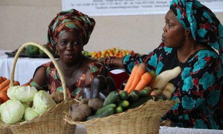 Au Sénégal, l'initiative « Le panier de la ménagère » relie les producteurs aux ménages vulnérables