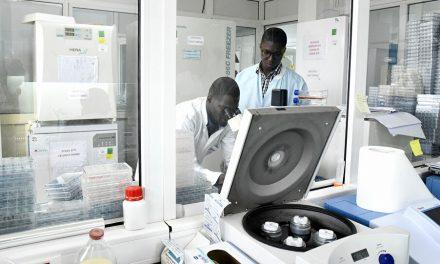 Covid-19 : le Sénégal compte produire de nouveaux kits rapides de dépistage
