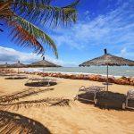 Covid-19 et soutien aux acteurs touristiques : le Sénégal déroule son plan de résilience