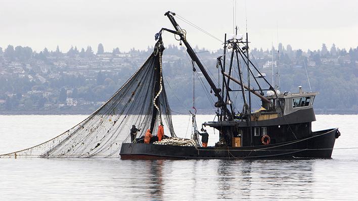 Journée mondiale des océans: L'OMC pour la réduction des subventions à la pêche préjudiciable 1