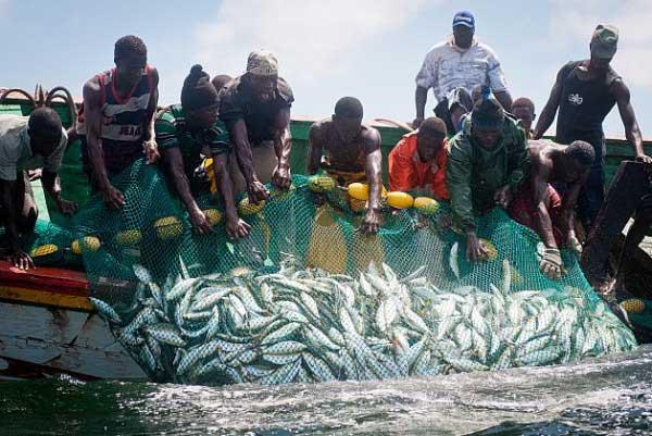 Journée mondiale des océans: L'OMC pour la réduction des subventions à la pêche préjudiciable