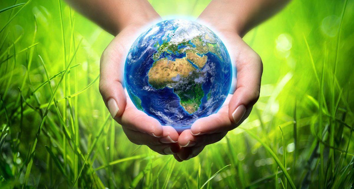 Journée mondiale de l'environnement à l'ère du coronavirus