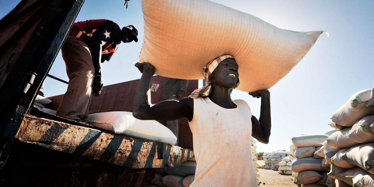 CÉRÉALES : UNE PRODUCTION RECORD DE 2.790 MILLIONS DE TONNES EN 2020