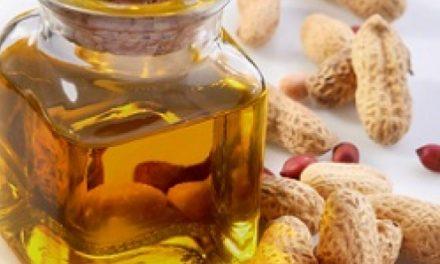 Sénégal : l'huilerie de Diamal envisage d'acquérir 200000 tonnes d'arachides en 2020