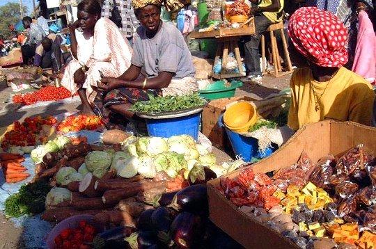 Sénégal: les conséquences de la pandémie Covid-19 sur l'agriculture