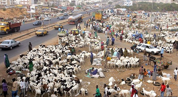COVID-19: Le ministre sénégalais de la Santé recommande à la population d'éviter les déplacements durant la Tabaski