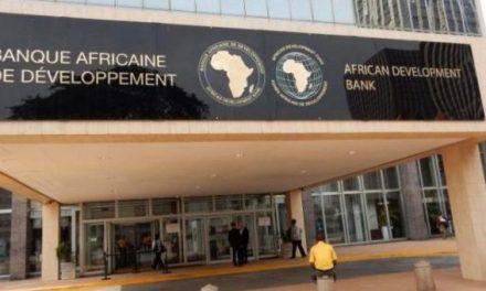Assemblées annuelles 2020 de la BAD : mieux reconstruire l'Afrique après la pandémie de Covid-19