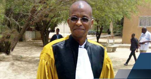 l'exploitation illégale du bois au Sénégal 1