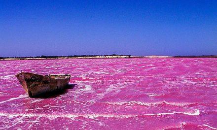 Le Lac Retba, le Lac rose du Sénégal