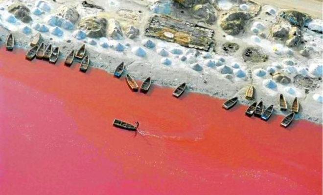 Le Lac Retba, le Lac rose du Sénégal 3