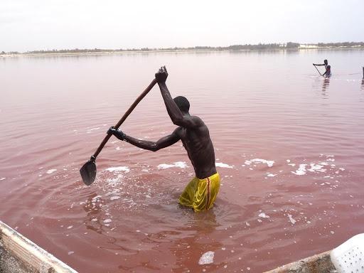 Le Lac Retba, le Lac rose du Sénégal 4