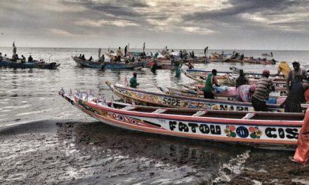 Pêche : 2 milliards de l'Etat pour l'achat de pirogues en fibre de verre