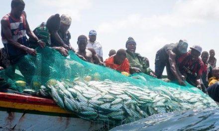 Plus de 50 milliards pour les Pêches et l'Économie maritime en 2021