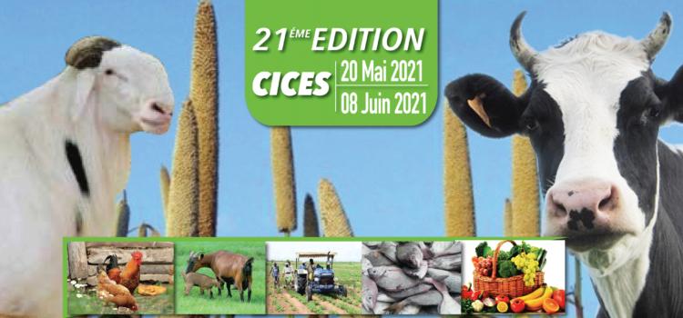 FIARA: 800 exposants attendus à une foire internationale de l'agriculture et des ressources animales à Dakar