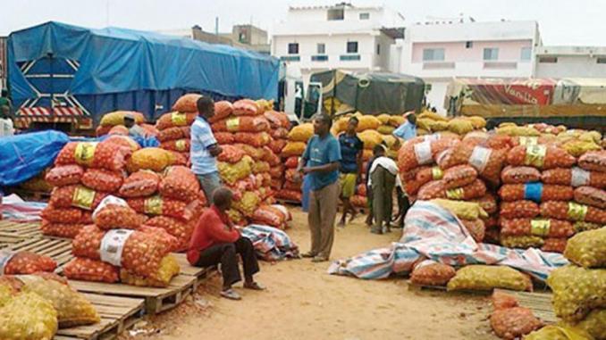 Oignon : à  Potou, les producteurs appellent l'Etat à  éviter la saturation du marché