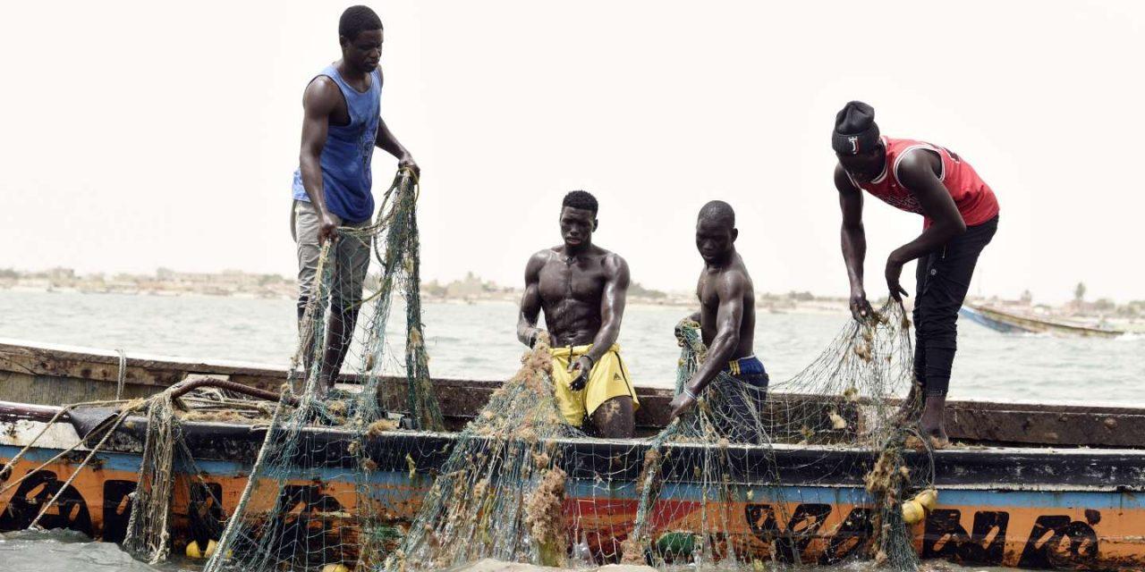 Le Sénégal perd 150 milliards par an à cause de la pêche illicite