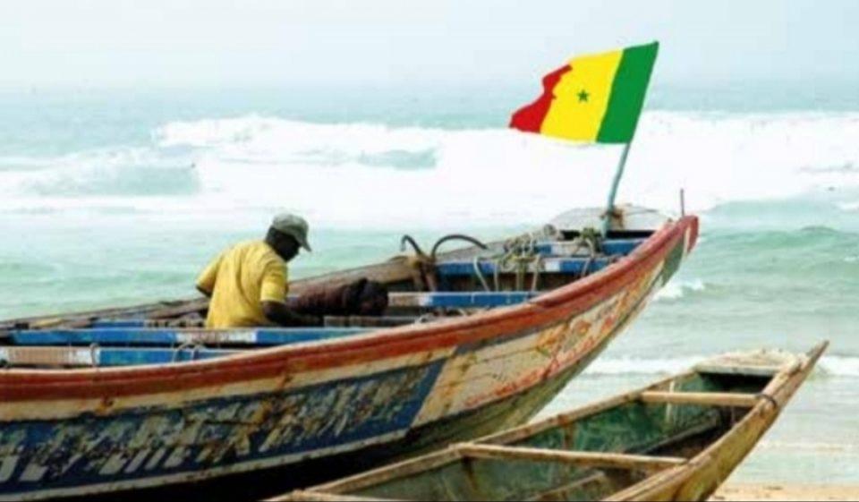 subvention de 1,5 MILLIARD FCFA POUR LE REMPLACEMENT DES PIROGUES en BOIS par des pirogues en fibre