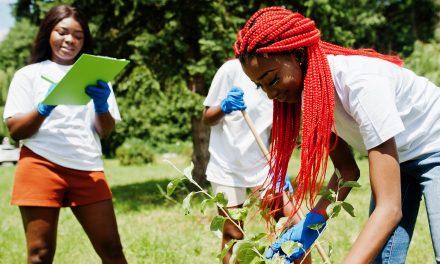 3 entreprises sociales innovantes au Sénégal